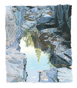 "Hidden River Pool - 10.25""x11.75"""